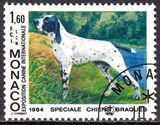 1984  Internationale Hundeausstellung