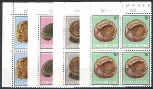 1984 Kultur: Fossilien